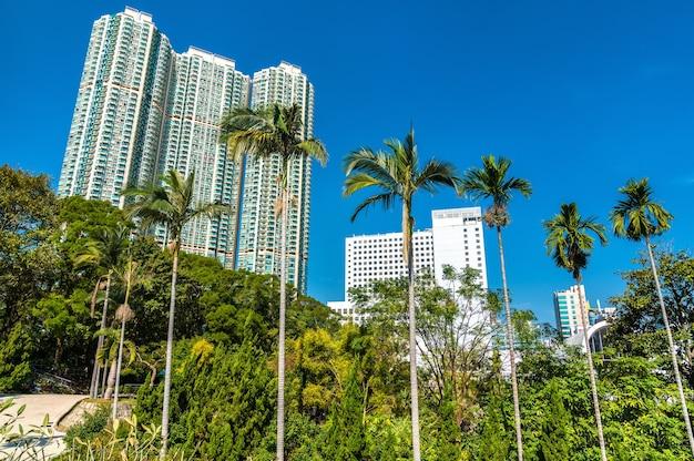 Palmbomen in kowloon park van hong kong, china