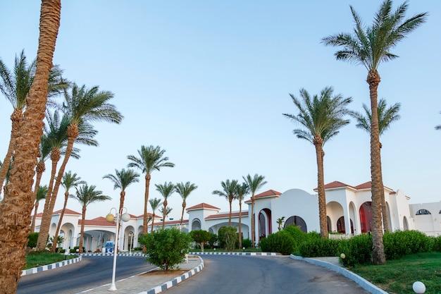 Palmbomen langs de weg die naar een groot hotel leidt.
