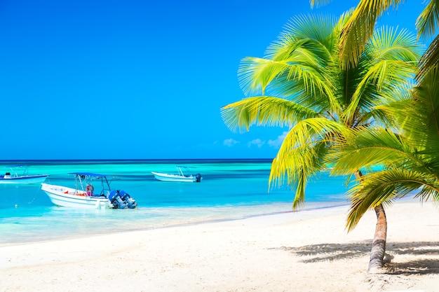 Palmbomen op het caribische tropische strand met boten en turquoise zee. saona-eiland, dominicaanse republiek. vakantie reizen achtergrond.