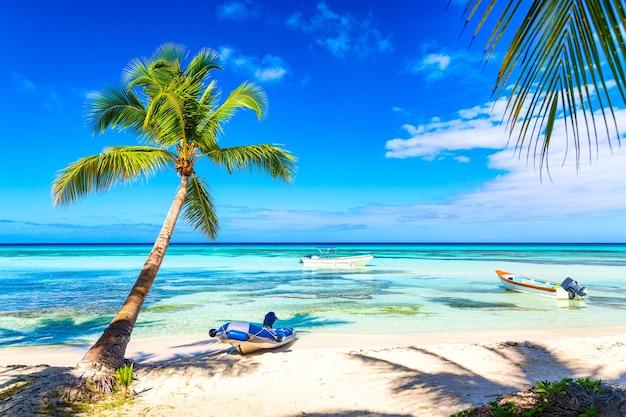 Palmbomen op het caribische tropische strand met boten. saona-eiland, dominicaanse republiek. vakantie reizen achtergrond.