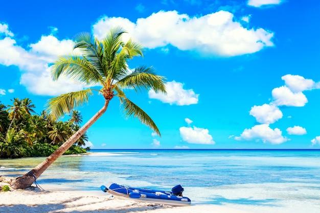 Palmboom op het caribische tropische strand met rubberboot. saona-eiland, dominicaanse republiek. vakantie reizen achtergrond.