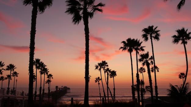 Palmen en schemerhemel in californië, vs, tropische oceaan, strand, zonsondergang, sfeer, los angeles, vibes
