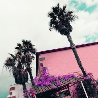Palmen. tropische locatie. minimaal reizen