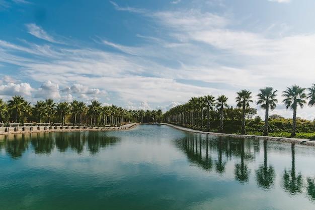 Palmen van een prachtige tuin weerspiegeld in het meer overdag