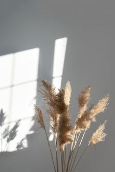 Pampagras met neutrale kleuren rietpluim stam gedroogd pampasgras decoratieve veerbloem