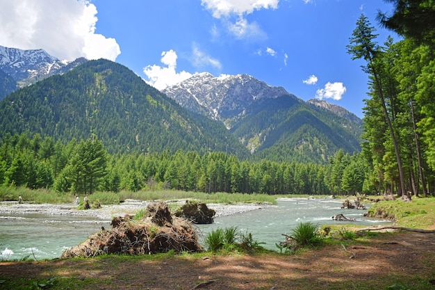 Panjokra river kumrat valley pakistan