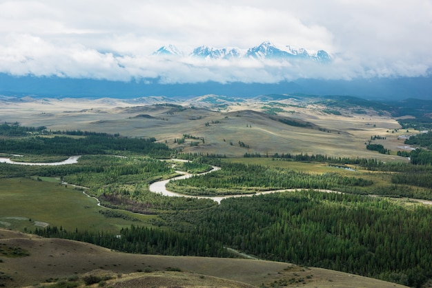 Panorama van bergen en bos