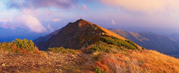 Panorama van bergen met pad. herfst landschap in de ochtend. karpaten, oekraïne, europa