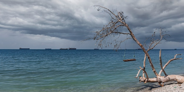 Panorama van bewolkte uitzichten op zee, schommels op een omgevallen boom en vrachtschepen
