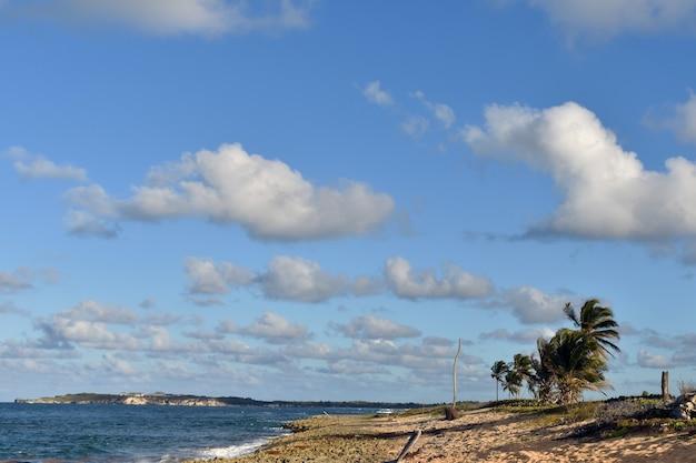 Panorama van de atlantische kust. dominicaanse republiek