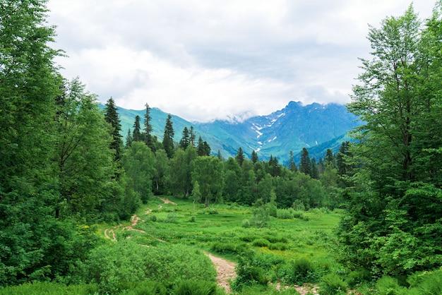 Panorama van de berg