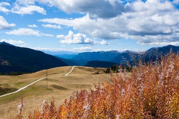 Panorama van de italiaanse alpen van de mening van de dolomieten van san martino di castrozza