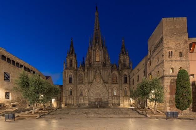 Panorama van de kathedraal van barcelona van het heilige kruis en heilige eulalia tijdens ochtend blauw uur