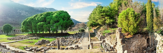 Panorama van de oude stad efeze in turkije gedurende de dag