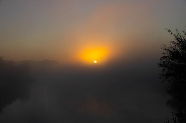 Panorama van de prachtige mistige meerkust bij zonsopgang.