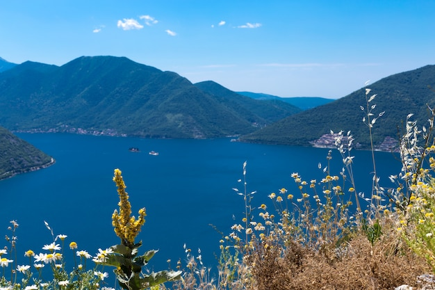 Panorama van kustlijn van de baai boka-kotor, montenegro