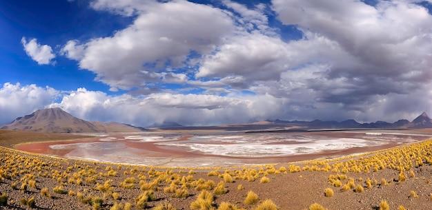 Panorama van laguna colorada in de nationale reserve van eduardo avaroa. potosi. altiplano. bolivia. zuid-amerika