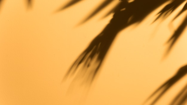 Panorama van wazig donker blad op gele achtergrond