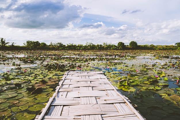 Panorama view bamboo bridge over het rode lotusmeer tegen blauwe hemel in de zomer tung dok bua dang. nakorn pratum thailand