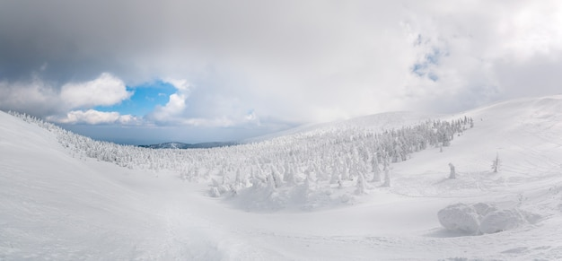 Panoramamening van sneeuwmonster op mt.zao