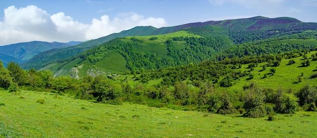 Panoramisch groen landschap in de vallei met bergen en weelderige vegetatie. santander.