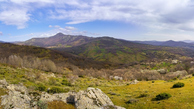 Panoramisch groen landschap met blauwe lucht met wolken en hoge bergen