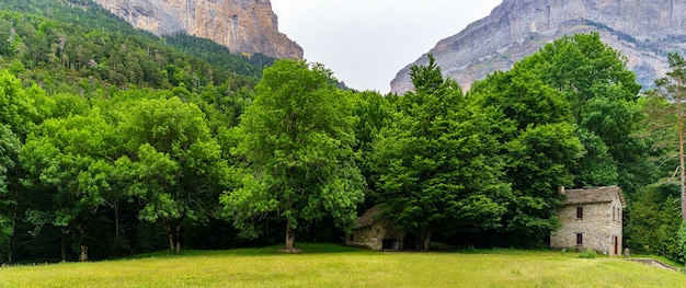 Panoramisch groen landschap met hoge bergen, bomen en stenen huis op groen gras. ordesa pyreneeën.