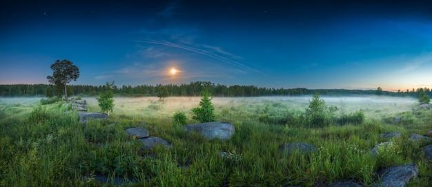 Panoramisch landschap nacht weide