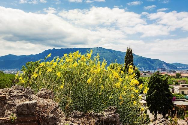 Panoramisch uitzicht op de berg vanuit de oude stad pompeii napels italië