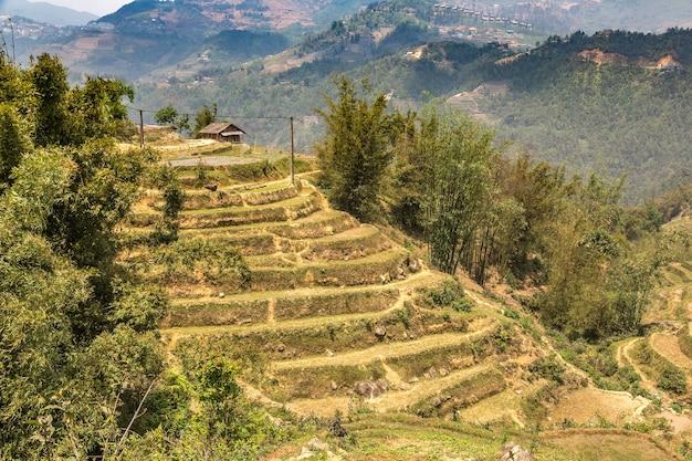 Panoramisch uitzicht op terrasvormige rijstvelden in sapa, lao cai, vietnam