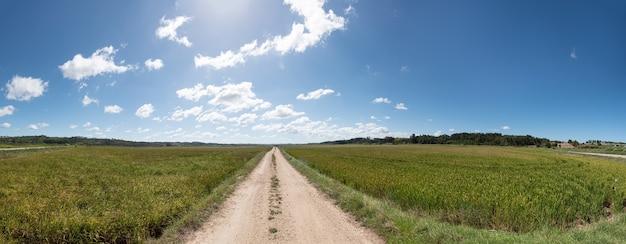 Panoramisch zicht op de weg met rijstvelden aan de zijkanten op een bewolkte dag