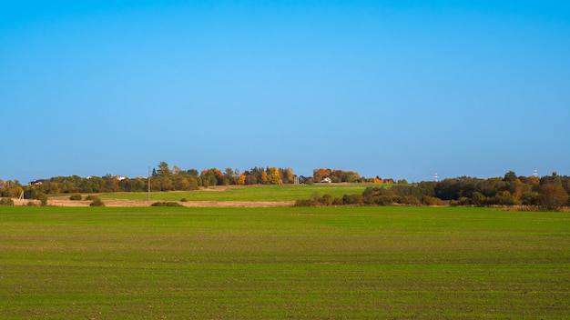 Panoramisch zicht op groen gras op helling met blauwe lucht.