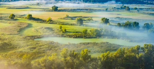Panoramisch zicht van ochtendmist op groen veld