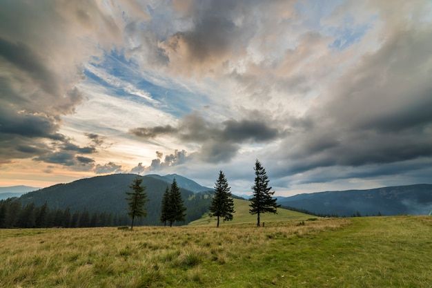 Panoramische de zomermening, groene grasrijke vallei op verre bosrijke bergen onder bewolkte hemel.