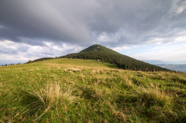 Panoramische de zomermening, groene grasrijke vallei op verre bosrijke bergenachtergrond onder bewolkte hemel.