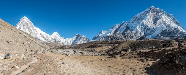 Panoramische opname van een prachtige vallei omgeven door bergen bedekt met sneeuw.