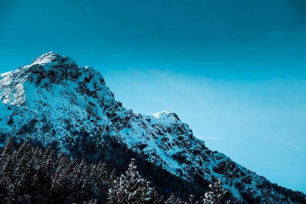 Panoramische opname van met sneeuw bedekte grillige bergtop met alpiene bomen aan de voet van de berg