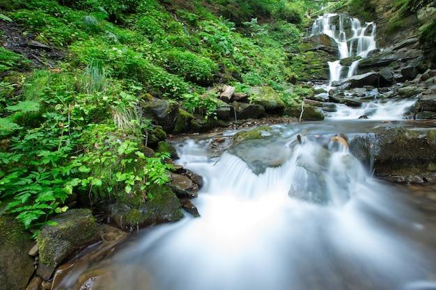 Panoramische prachtige diepe boswaterval