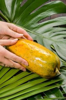 Papaja op palmbladen op een donkere houten achtergrond. dames handen.