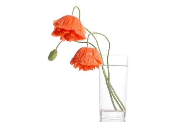 Papavers in glazen vaas op wit oppervlak