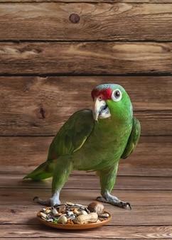 Papegaaivoedsel is verspreid op een houten tafel. de groene papegaai die van amazonië het voedsel eet.