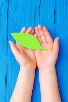 Papier groen blad in handen van kind.