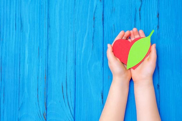 Papier groen blad in handen van kind