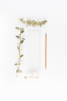 Papier in de buurt van potlood en naald- en struiktakjes