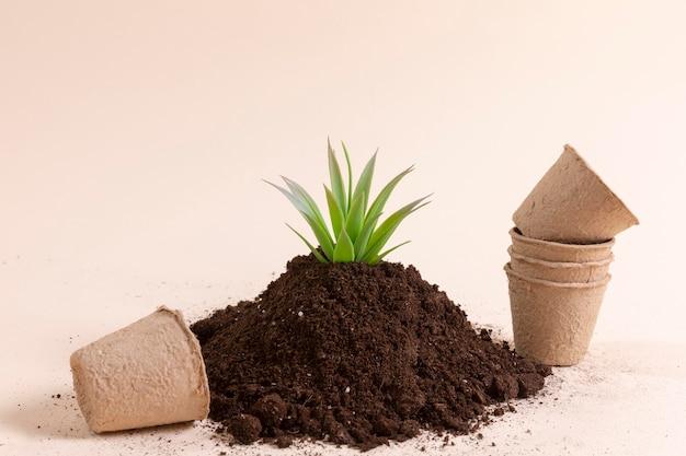 Papieren bekers en plantarrangement
