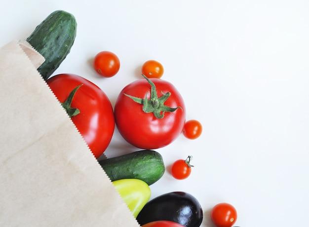 Papieren boodschappentas met verse komkommers, tomaten, aubergines en paprika's