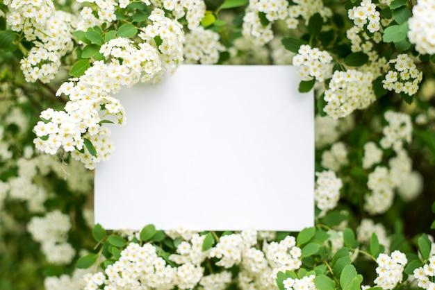 Papieren kaart op witte bloemen