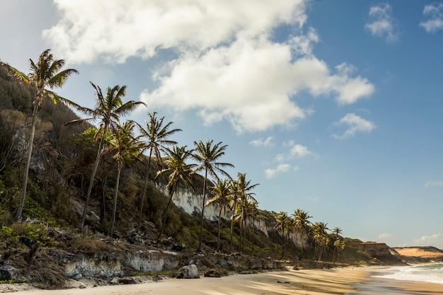 Paradijsstrand in pipa, rio grande do norte, brazilië.