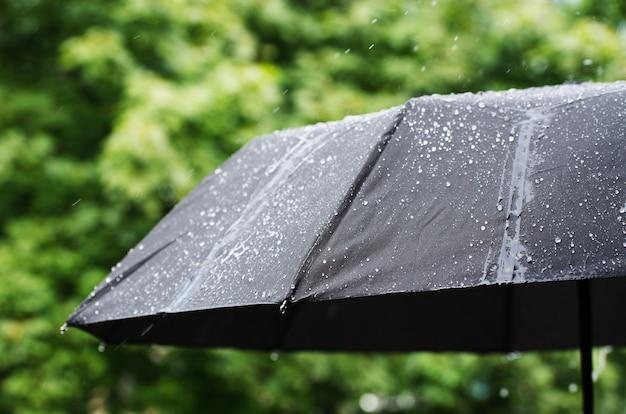 Paraplu en regendruppelsclose-up