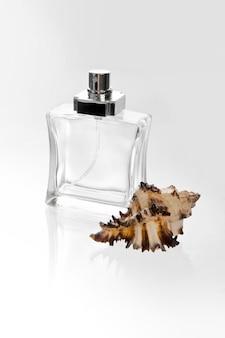 Parfum en zeeschelp op wit